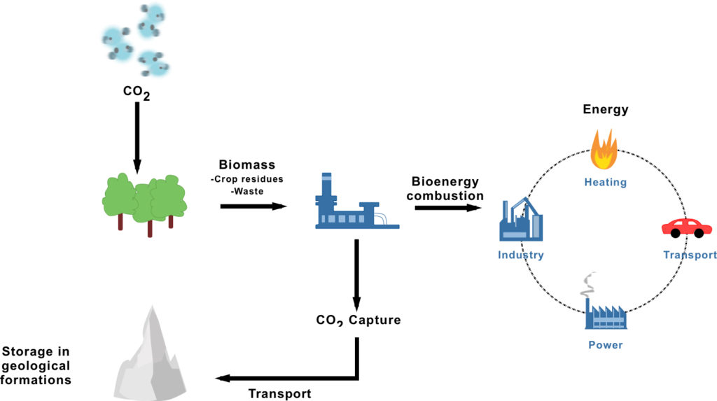 Bioenergy and Carbon Capture and Storage infographic